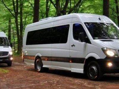 rent-mini-van-driver-2-400x300 Benz Sprinter 12 seats