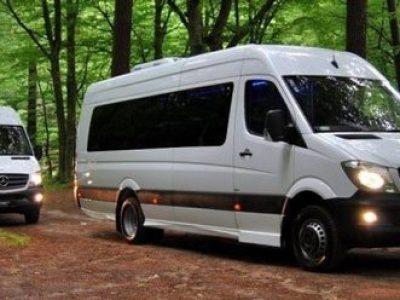 rent-mini-van-driver-2-400x300 Benz Sprinter 12 seats